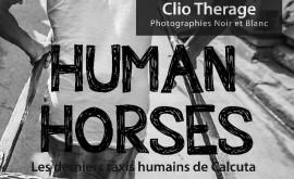 HUMAN HORSES