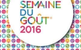 logo_sdg_2016